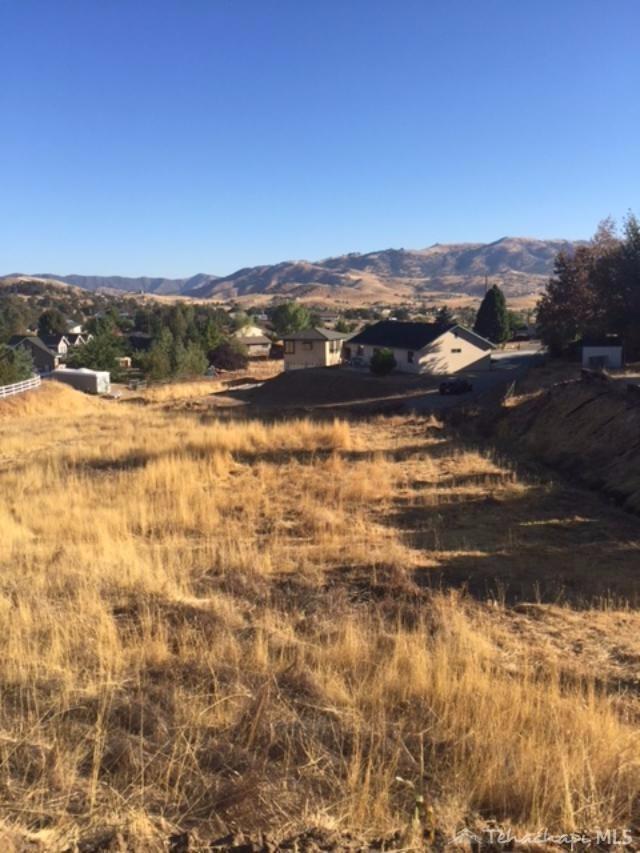 21109 Quail Springs Dr,Tehachapi, CA  93561-6806